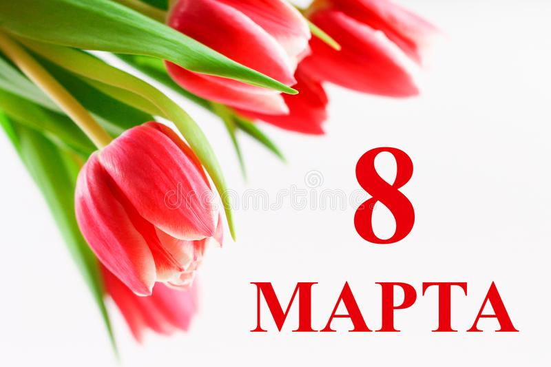 The text in Russian: from 8 March. International Women`s Day. Tulips on a white wooden table. royalty free stock photo