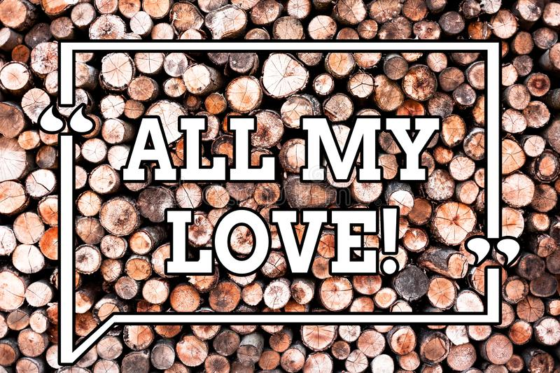 Text sign showing All My Love. Conceptual photo The whole affection and good feeling for you Roanalysisce happiness. Wooden background vintage wood wild message royalty free stock image