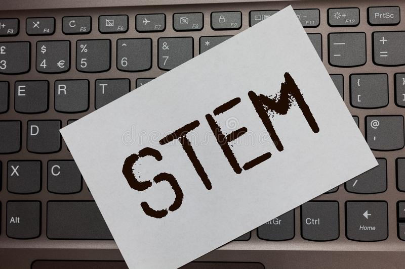 Text sign showing Stem. Conceptual photo Development destruction of human embryos for science and research Black laptop keyboard a. Rt paper nice computer royalty free stock photos