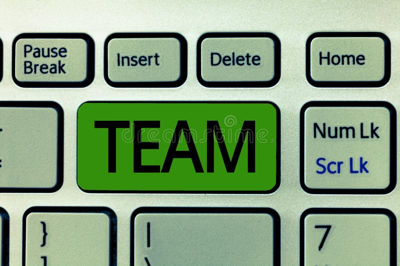 Text sign showing Team. Conceptual photo Group of people working together Classed and share certain beliefs.  stock photo