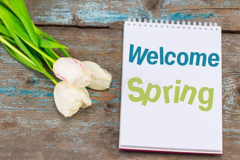Text-willkommener Frühling auf Notizbuch Frische Blumen auf altem hölzernem BAC stockfotografie