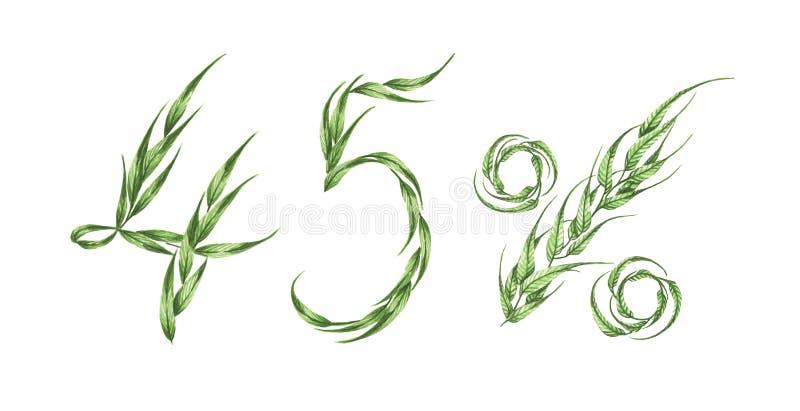 texte de 45%, quarante-cinq pour cent des feuilles vertes Illustration d'aquarelle illustration stock