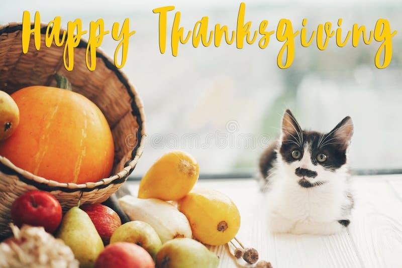 Texte heureux de thanksgiving, carte de voeux de saisons Sig de thanksgiving image libre de droits