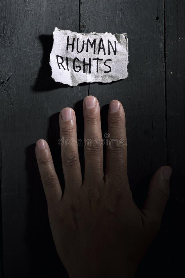 Textmänskliga rättigheter i ett stycke av papper fotografering för bildbyråer