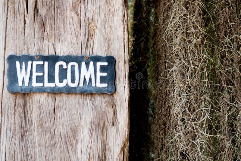 Texto bem-vindo na etiqueta de madeira que pendura na parede de madeira imagens de stock royalty free