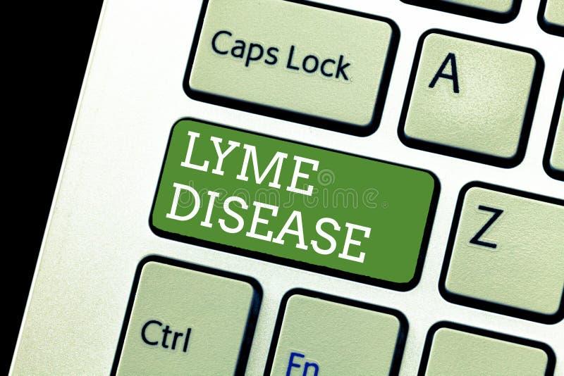 Texto da escrita que escreve a doença de Lyme Formulário do significado do conceito da artrite causado pelas bactérias que são es fotos de stock