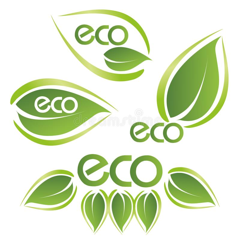 Texto de ECO em um conceito nas cores ecológicas ilustração royalty free