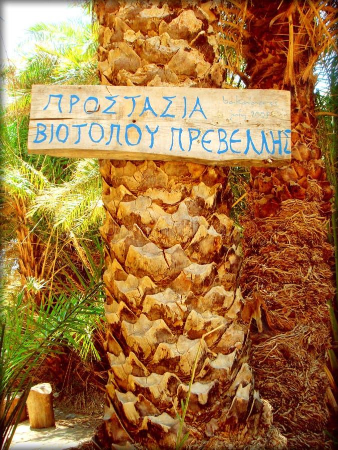 Texto de informação de Preveli no papel de parede de madeira do fundo foto de stock