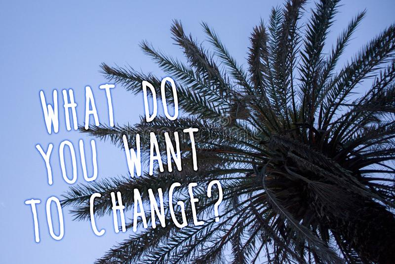 Texto de la escritura qué usted quieren cambiar la pregunta Cielo azul de la palmera alta objetiva de la decisión de planeamiento foto de archivo libre de regalías