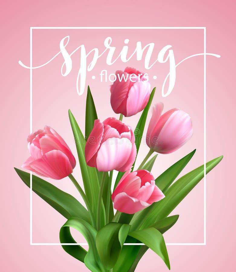 Texto de la primavera con la flor del tulipán Vector ilustración del vector
