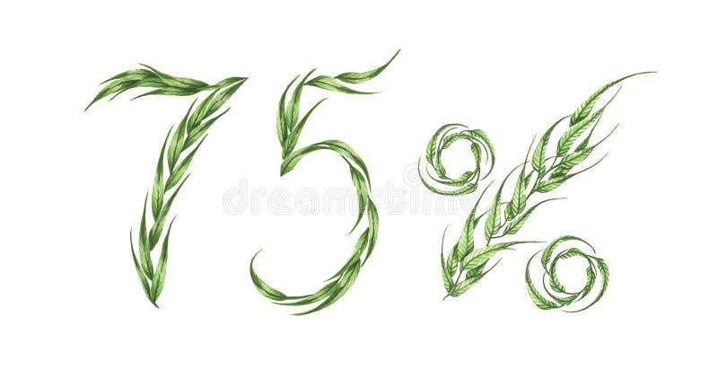 texto de 75%, Seventy-five por cento das folhas verdes Ilustração da aguarela ilustração do vetor