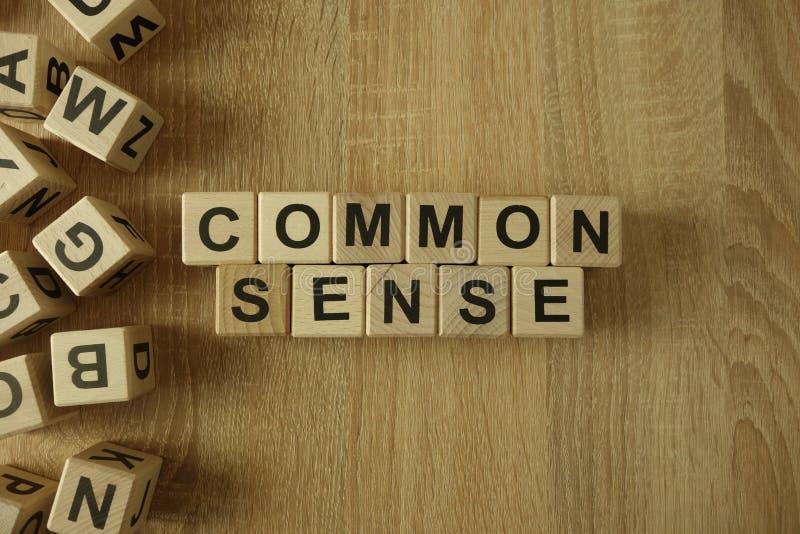 Texto del sentido común de bloques de madera fotos de archivo