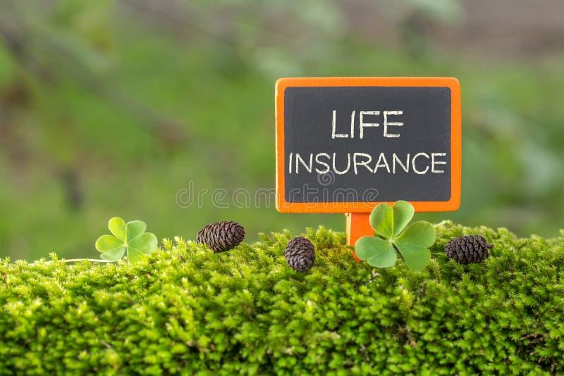 Texto do seguro de vida no quadro-negro pequeno imagem de stock royalty free