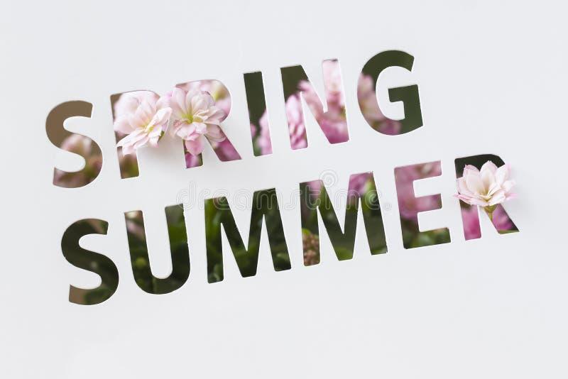 Texto perforado en la tarjeta de papel, cortando estilo con palabras de la primavera y verano y flores rosadas adornadas moderno fotografía de archivo libre de regalías
