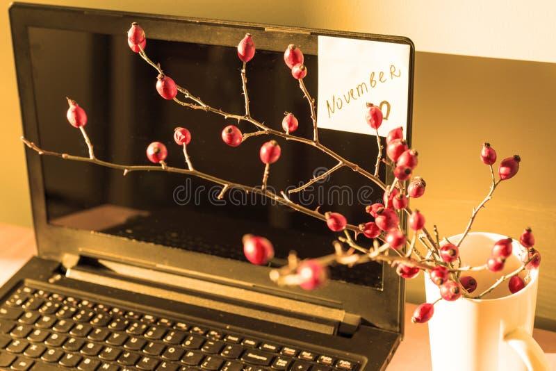 Textotez novembre sur le moniteur, tasse avec un bouquet d'automne images libres de droits