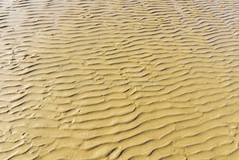 Textre, ontwerp door waterstromen op het zand stock afbeeldingen