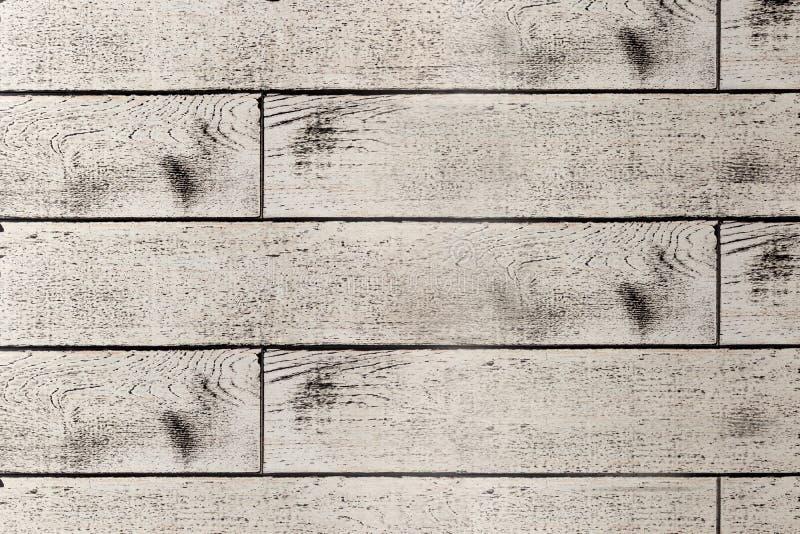 Textrure del piso del roble de plata imagen de archivo libre de regalías