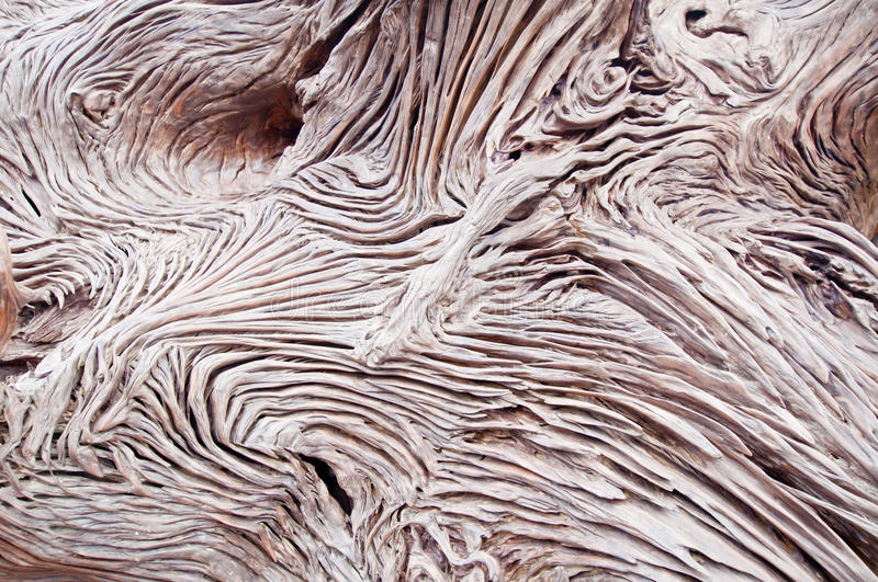 Textuer of rough wood royalty free stock photo