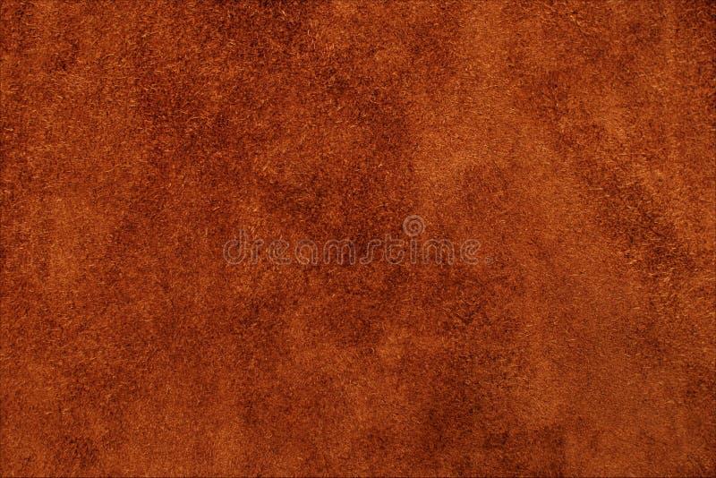 Textur är en hud fotografering för bildbyråer