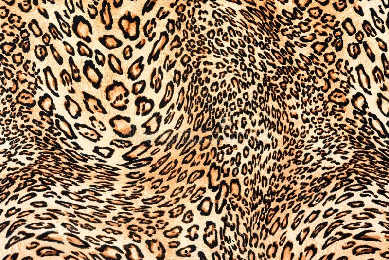Textur av övre trycktyg för slutet gjorde randig leoparden arkivbilder