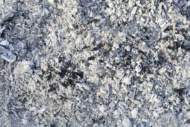 Textur av askaen Naturlig grå bakgrund av bränt trä Br?nda kol arkivbild