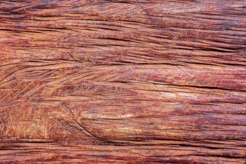 Textur av att klippa timmer vid chainsawen arkivbilder