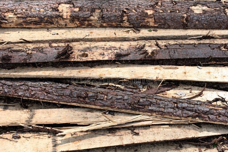 Textur av avverkat sörjer bräden royaltyfria bilder