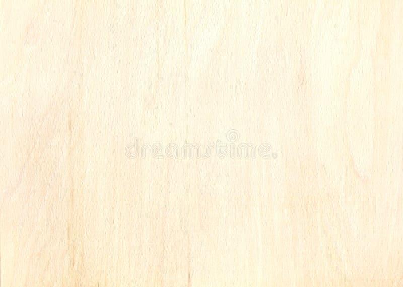 Textur av björkkryssfanerplankan med den naturliga trämodellen arkivfoton
