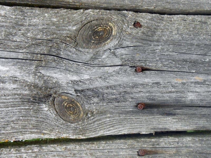 Textur av brädet med två ovala modeller och fyra spikar royaltyfri bild