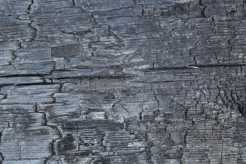 Textur av bränt trä royaltyfri foto