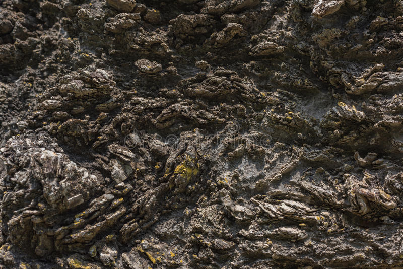 Textur av Calc-silikat vaggar (Metamorphic vagga), royaltyfri foto