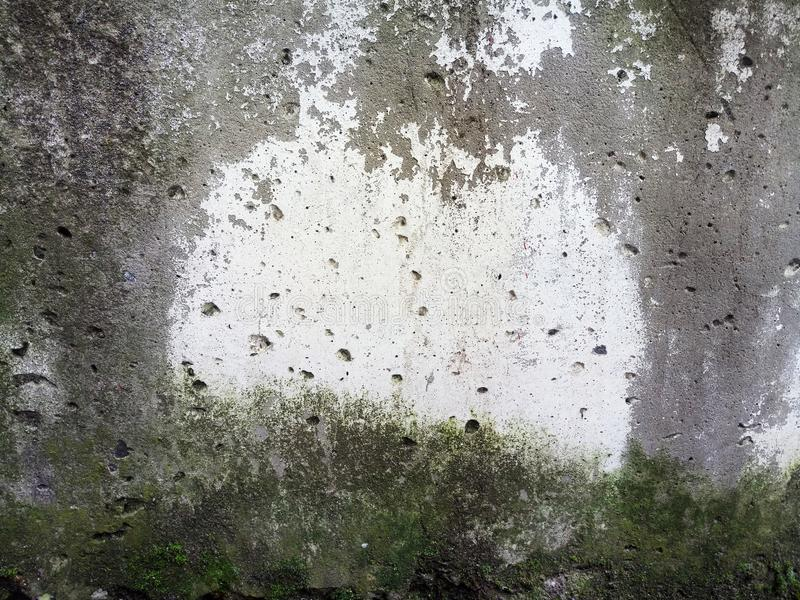 Textur av den konkreta tjock skiva i grön mossa och formen, bakgrund royaltyfri bild