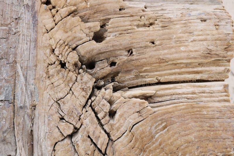Textur av en gammal trästång arkivbild