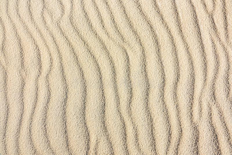 Textur av en sanddyn fotografering för bildbyråer