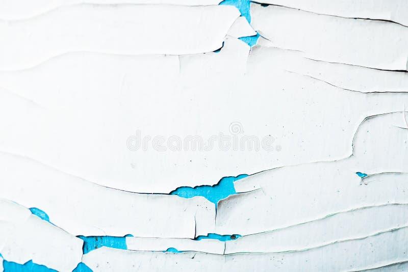 Textur av en skalningsvit och blått målar på en gammal träyttersida royaltyfri fotografi
