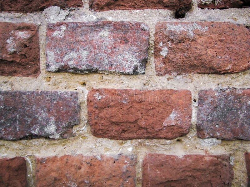 Textur av en vägg, tegelstentextur, ljust makrofoto arkivbilder