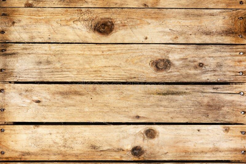 Textur av ett trä arkivbild