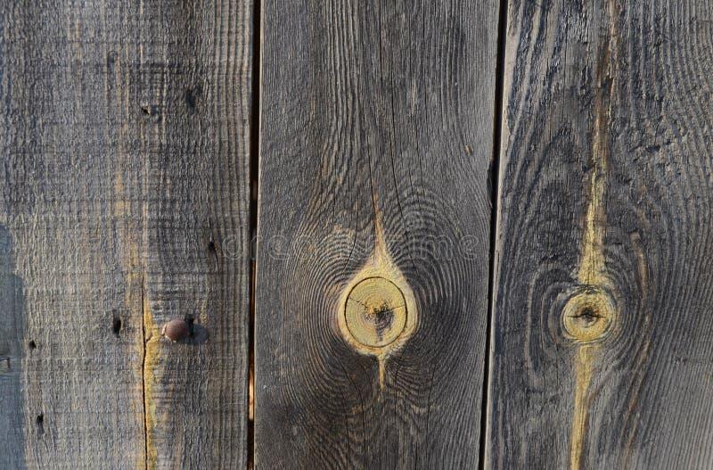 Textur av gamla urblekta svarta tr?br?den arkivbilder