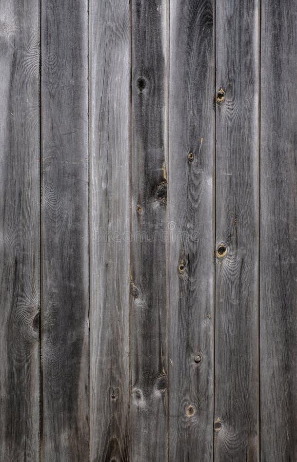 Textur av grått trä från flera bräden royaltyfri foto