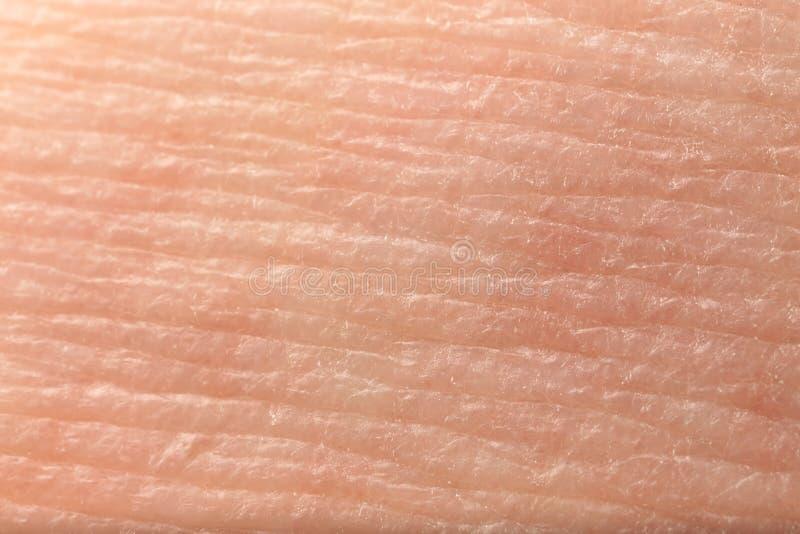 Textur av hud, closeup royaltyfri fotografi
