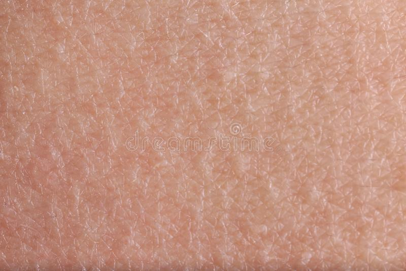 Textur av hud, closeup arkivbilder