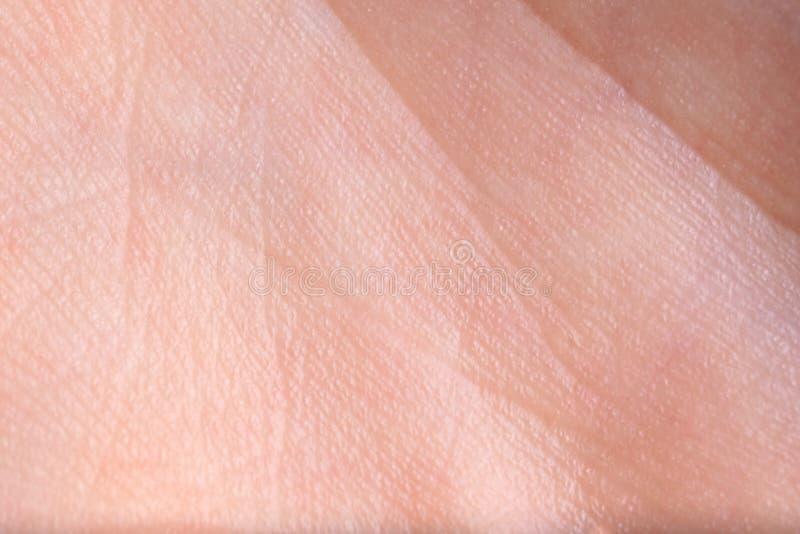 Textur av hud, closeup arkivfoton