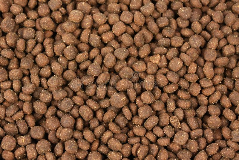 Textur av hundkapplöpning eller katter för djur matning arkivfoto