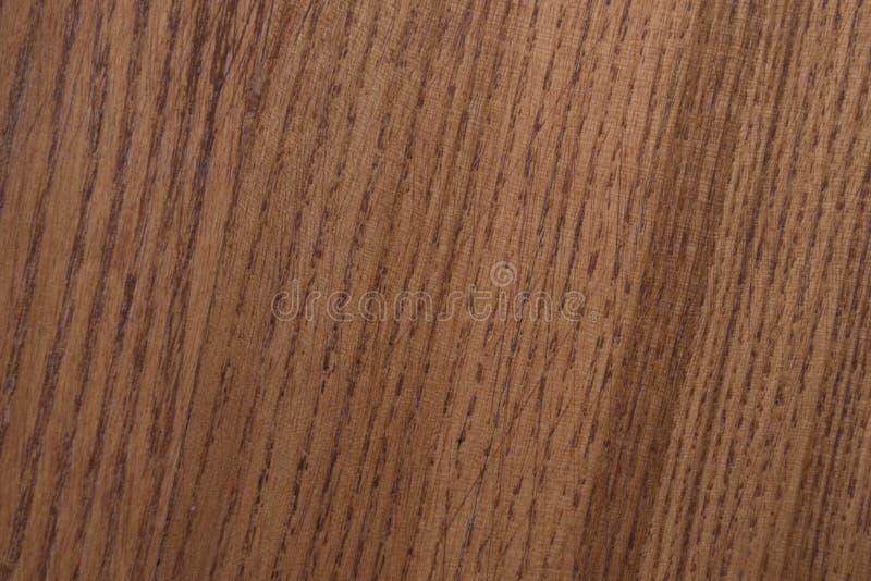 Textur av lackad wood bakgrund royaltyfria foton