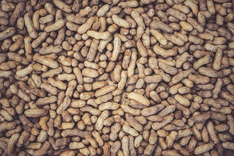 Textur av många jordnötter torkas i solen arkivfoto