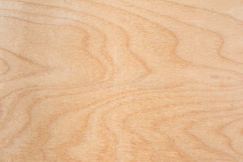 Textur av naturlig björkkryssfaner, yttersidan av bråteet är rå, mycket fiber och små chiper royaltyfri foto