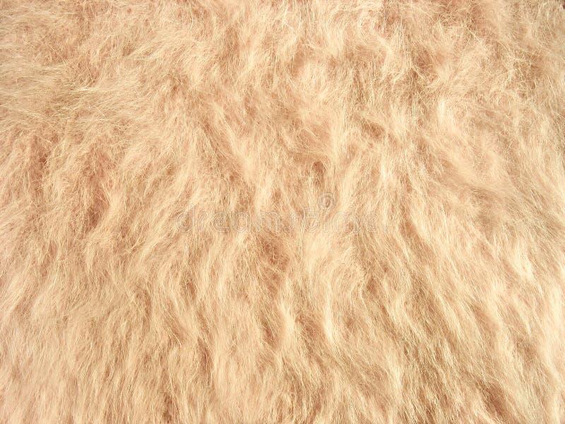 Textur av slappt beige fleecy tyg royaltyfria bilder