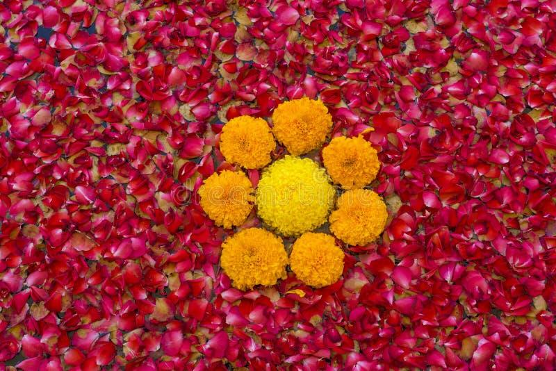 Textur av spridd rosa och röd blommabakgrund arkivfoto