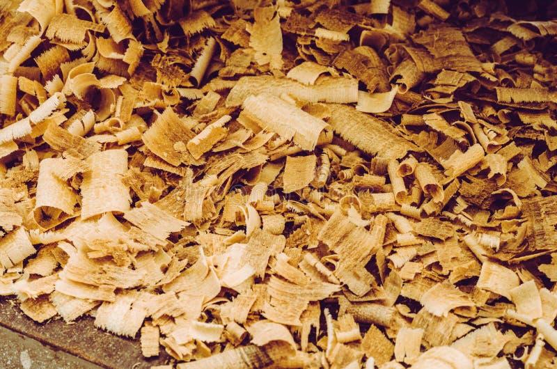 Textur av stora trächiper, begrepp för seminarium royaltyfri bild