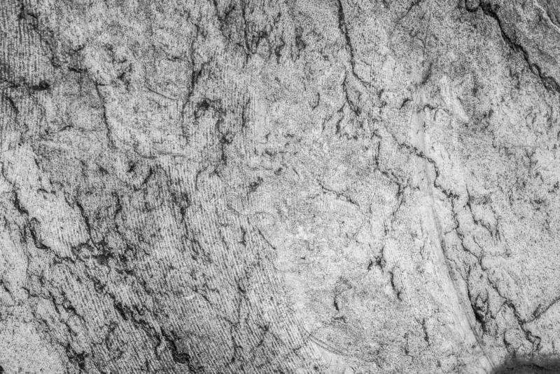 Textur av svartvit rå marmor med spårar av sågen för bakgrunden royaltyfria foton